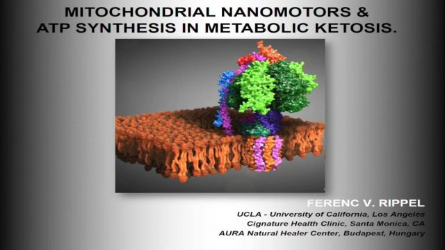 Mitochondrial nanomotors and ATP synthesis in metabolic ketosis – Prof. Ferec Rippel